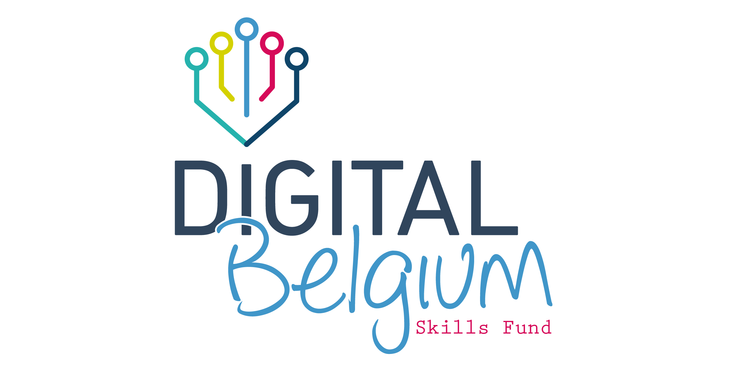 Digital Belgium Skills Fund